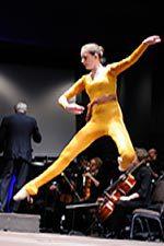 Musical zoo ballet dancer