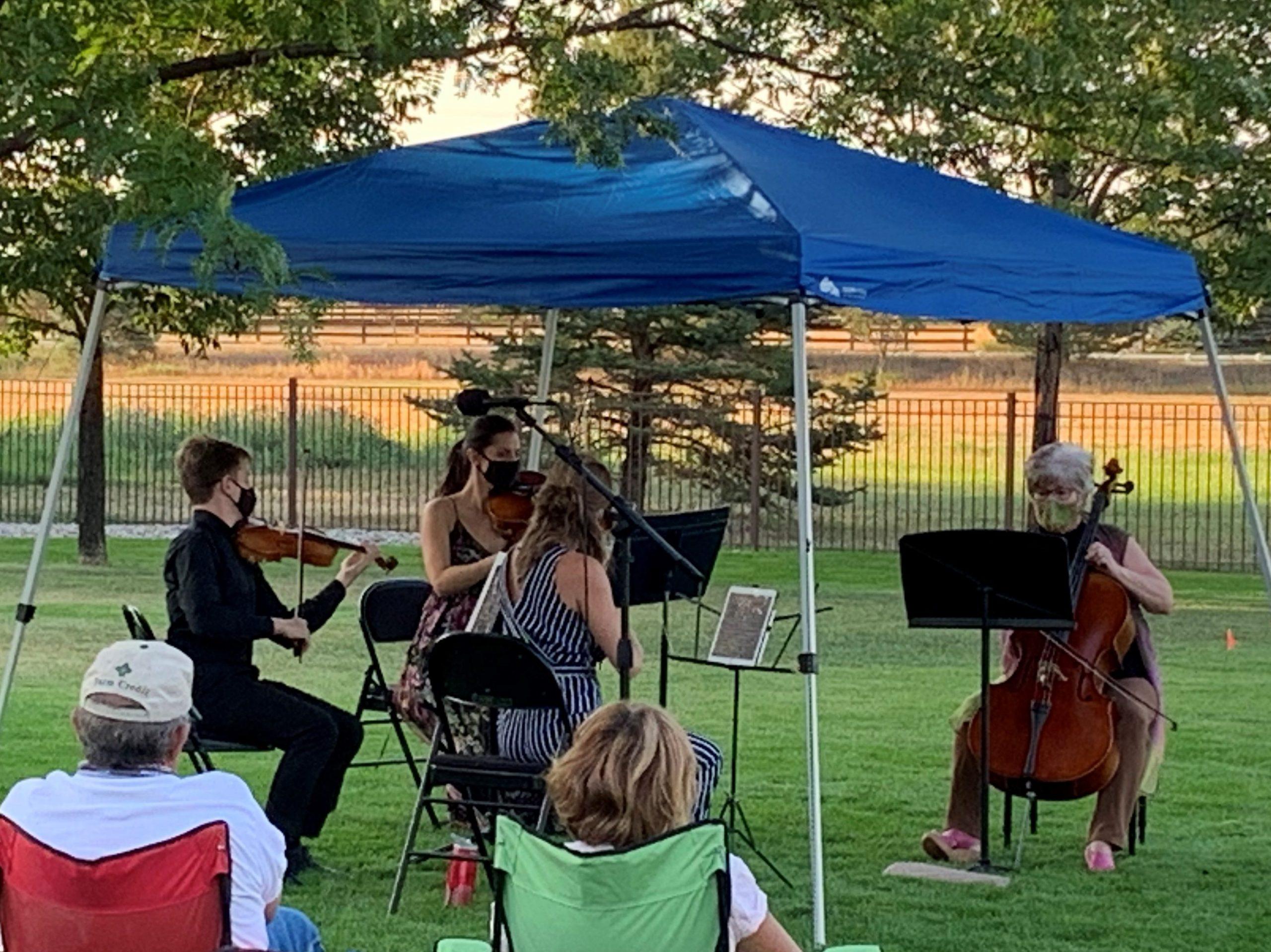 Pettine gardens concert