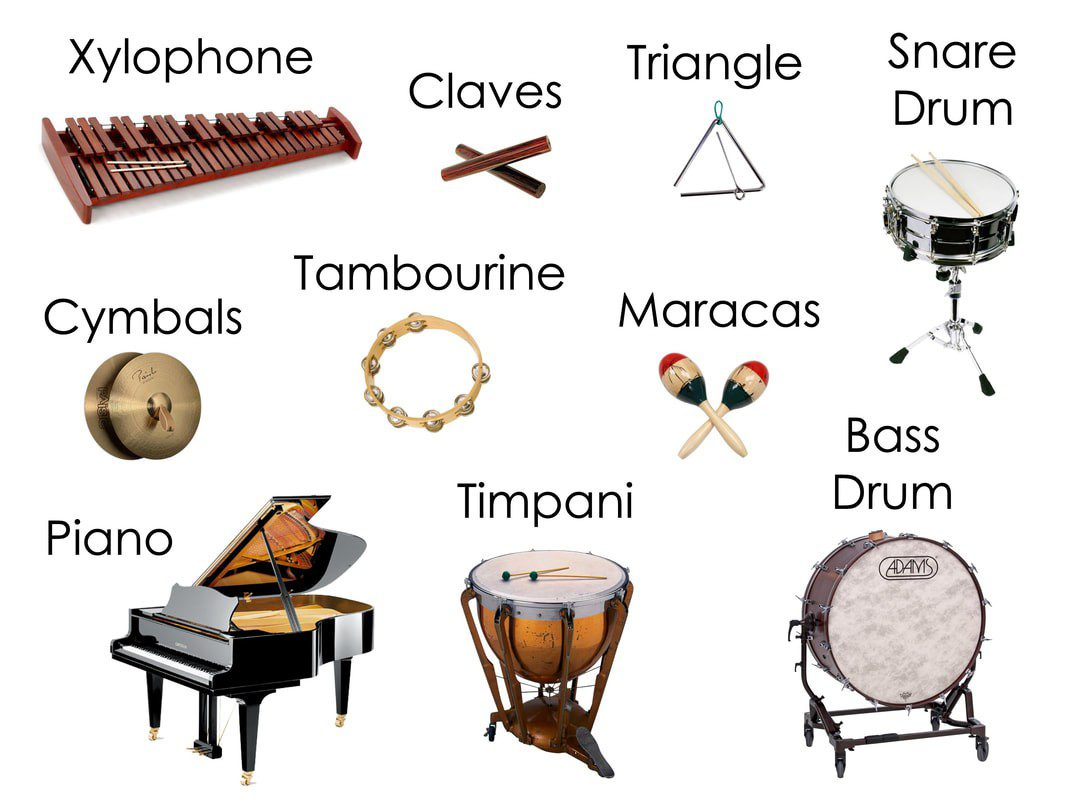 Percussion Instruments, Peter and the Wolf