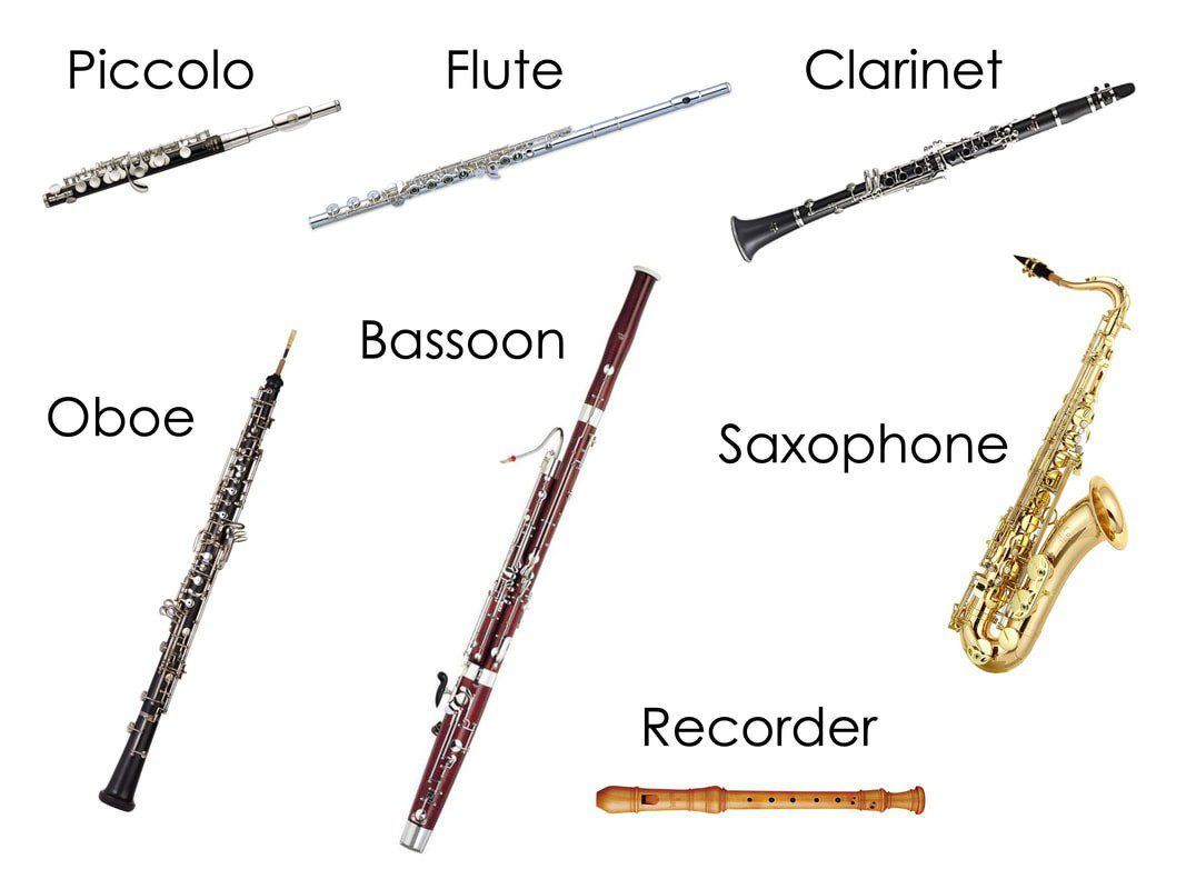 Woodwind Instruments, Peter and the Wolf